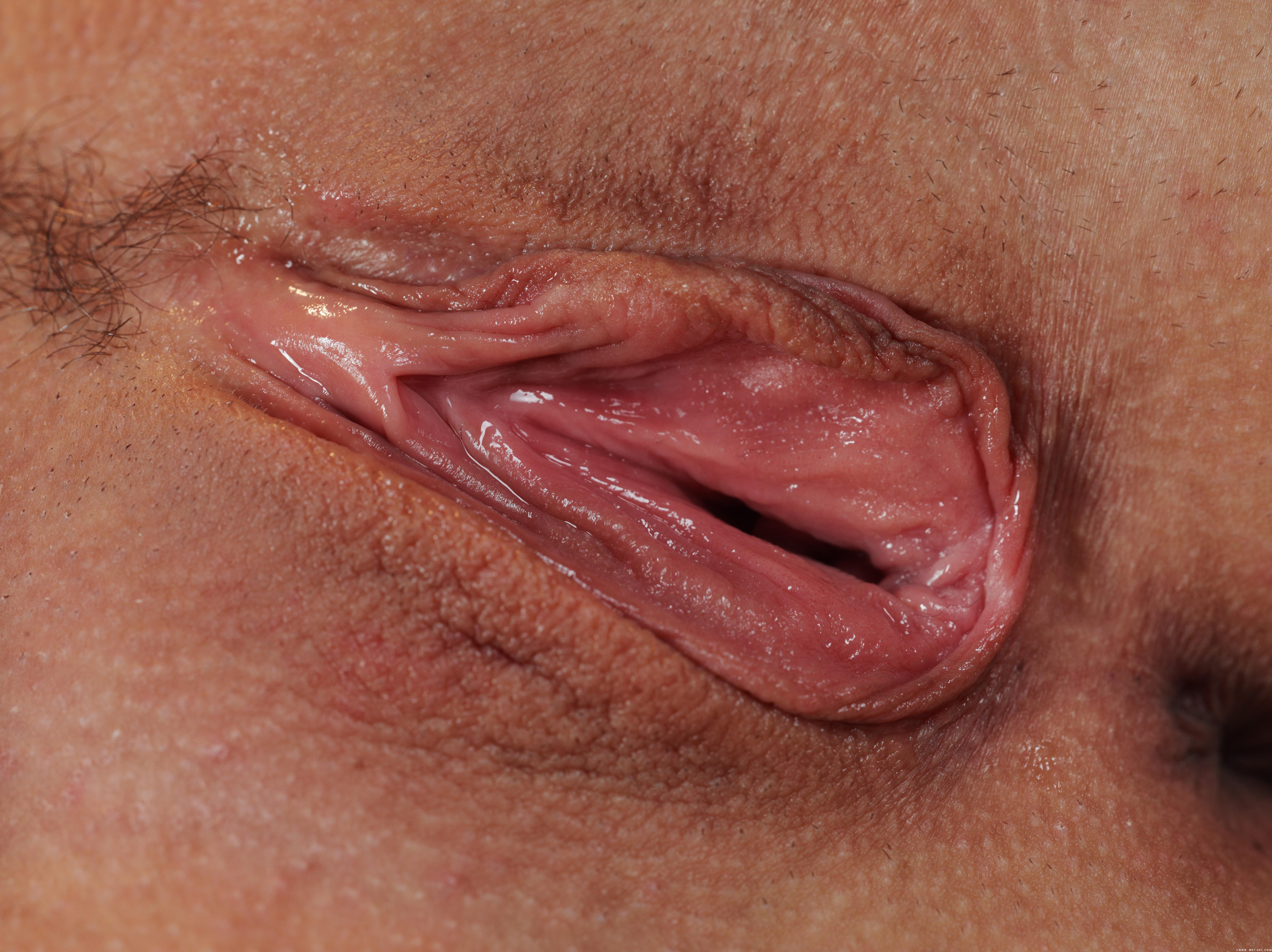 Половые органы у девочек, формирование и развитие