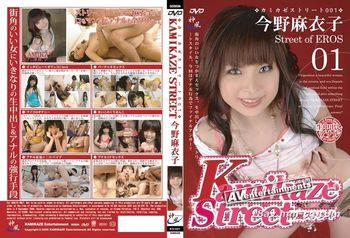 Kamikaze Street Vol.01