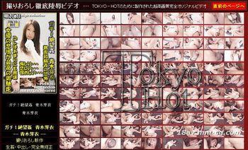 Tokyo Hot n0533